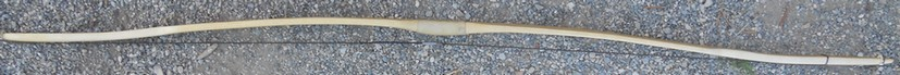 DSCN6457
